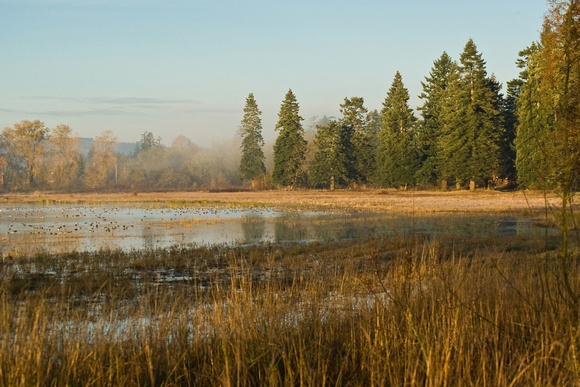 Tualatin Valley National Wildlife Refuge